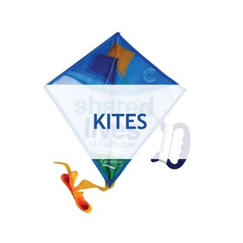 Picture for category Kites
